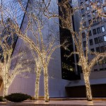 Christmas Trees, Solow Building, 58th Street West